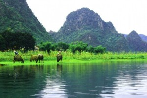 Phong Nha-Ke Bang, dans la province de Quang Binh