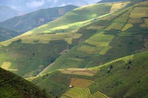 Le réseau de rizières en terrasses de Hoang Su Phi