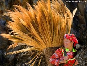 La fille Hmong dans la province de Dong Van, Ha Giang