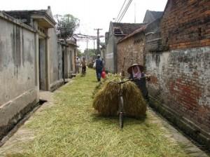 Village Duong Loi, Province de Bac Ninh