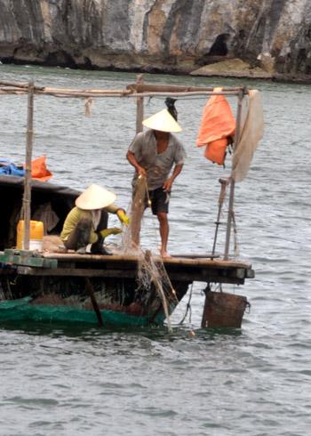 la vie des pecheurs du village Cua Van
