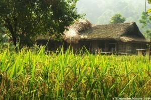 Le village au soleil du matin