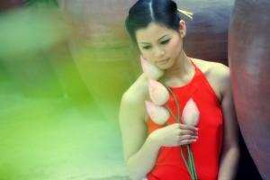 Le Yem Dao dans les collections des styliste