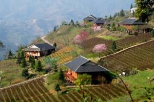 Le village au printemps